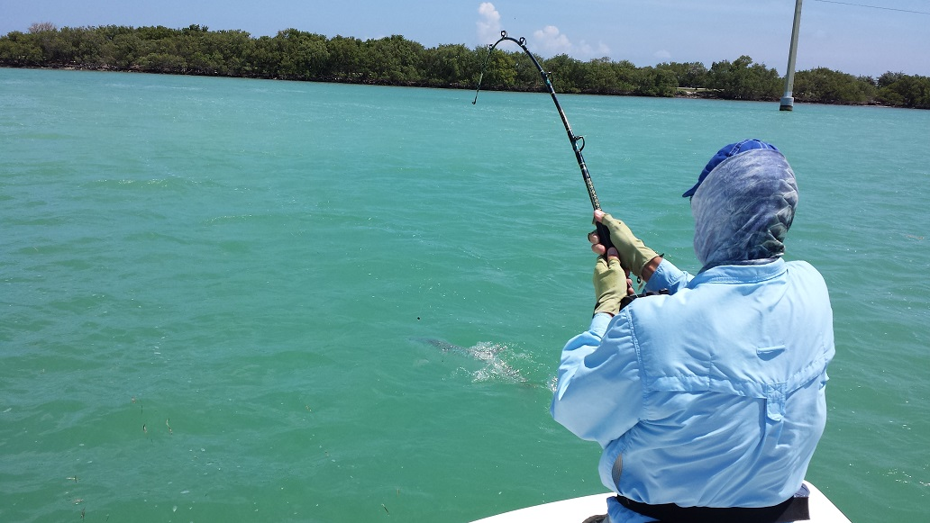 5 23 13 summer key largo fishing report backcountry key for Key largo fishing report
